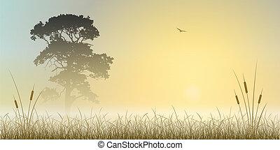 Misty Landscape - A Misty Sunrise, Sunset Landscape with...