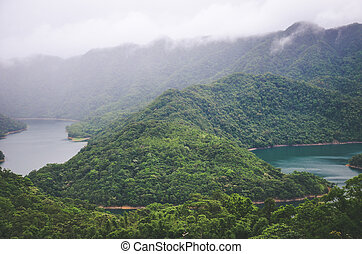 Misty landscape by Thousand Island Lake in Taiwan, Asia. Lake in fog surrounded by tropical forest, rainforest. Moody weather. Vintage retro, hipster style