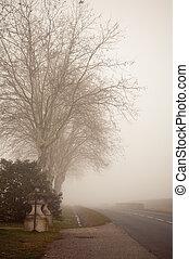 Misty Landscape - II