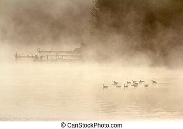 Misty Manitoba Morning