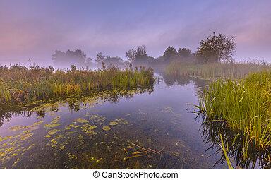 River landscape through foggy marshland on an early morning in september near Haren, groningen, Netherlands