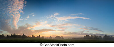 Misty meadow at dawn panorama