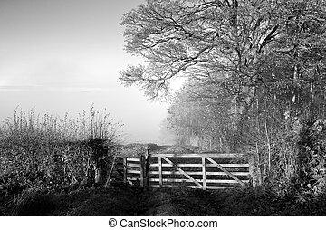Misty morning autumn landscape
