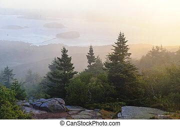 Misty morning Cadillac Mountain - Sunrise on misty morning...