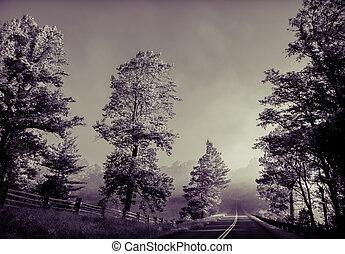misty morning in blue ridge mountains