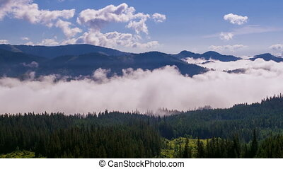 Misty Morning in the Mountains. Fog and Cloud Mountain...