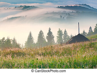 Misty morning in the mountains village