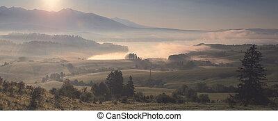 Misty morning landscape