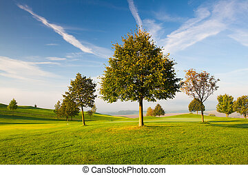 Misty morning on a empty golf course