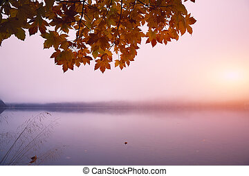 Misty morning on the lake Altausseer See