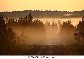 Misty morning over gravel road in Sweden