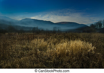 misty morning over the landscape