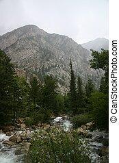 Misty Mountain Brook