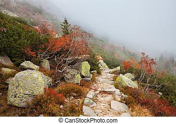 Misty Mountain Path - Misty mountain path in autumn scenery ...