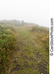 Misty Path 2
