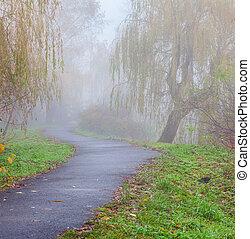 Misty path in the autumn park