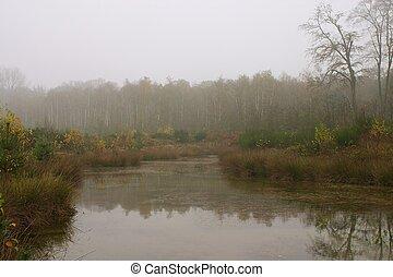 Misty Pond 2