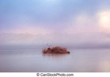 Misty River Island