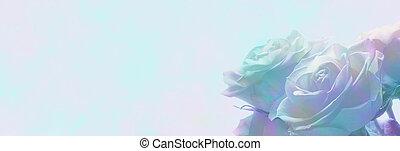 Misty romantic roses web banner