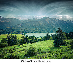 Misty summer morning on the Bohinj lake
