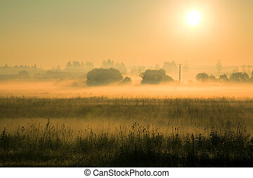 Misty summer morning - Beautiful sunrise over a meadow in...