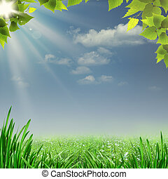 Misty summer noon. Abstract natural backgrounds for your design