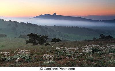 Misty sunrise in the mountain