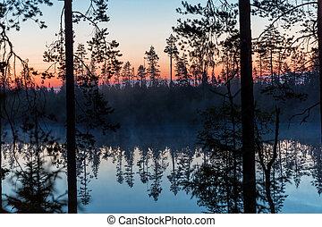 Misty sunrise on a forest lake