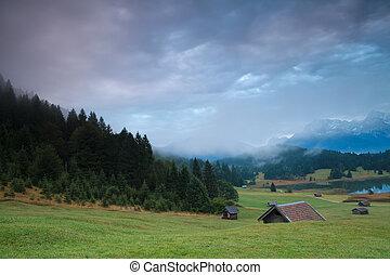 misty sunrise on alpine meadows