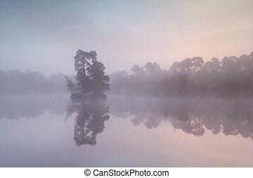 misty sunrise on wild lake - misty autumn sunrise on wild ...