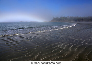 Misty Tofino Beach