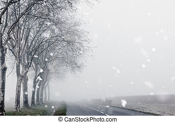 Misty Winter rural landscape with country road
