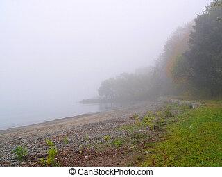 misty#3
