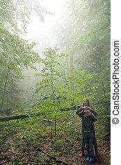 mistyczny, syn, zielony las, macierz, mglisty
