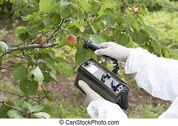 misurazione, livelli, radiazione, frutta