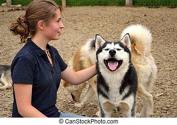 mit, tonåring, huskies