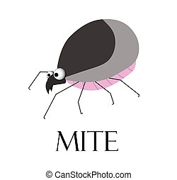 mite. Teak is a blood-sucking insect. The parasite is a tick. Summer epidemic. Lyme Disease