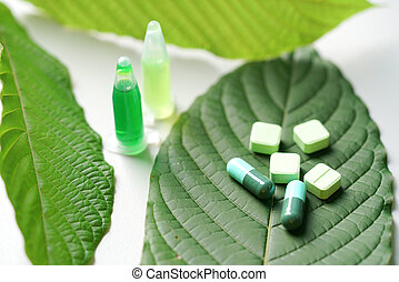 Mitragyna speciosa korth (kratom) drug plant with pills in ...