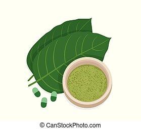 Mitragyna speciosa, kratom leaf with powder product. Vector ...