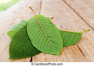 Mitragyna speciosa leaves on wooden table. Natural medicinal...