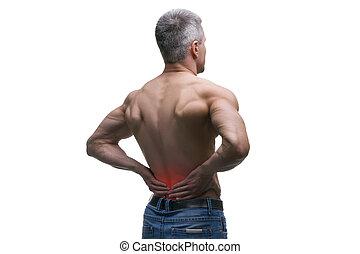 mitt åldraades, man, med, smärta tillbaka, muskulös, hane organism, studio, isolerat, skott, vita, bakgrund