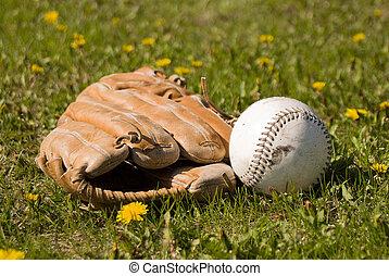 Mitt and Softball - A softball and mitt lying in the grass...