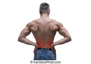 mittelalt, mann, mit, schmerz, in, der, nieren, muskulös, männlicher körper, studio, freigestellt, kugel, weiß, hintergrund