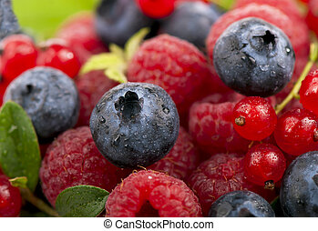 Mix of berries - raspberry, bilberry and red currant