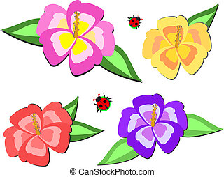 Here is a mix of hibiscus flowers and two ladybugs.