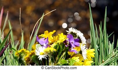 Mix of spring flowers and flowing water in the background