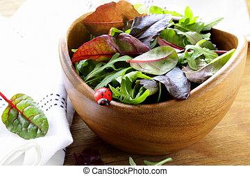 mix salad arugula, iceberg - mix salad (arugula, iceberg,...