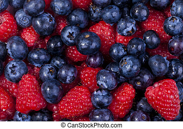 A high resolution image of mixed berries