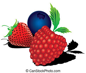 The abstract of mixed berries - blueberry, raspberry, strawberry, vector