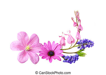 Mixed Flowers - Colorful springs flowers isolated on white...